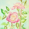ccee1-kathryn-duncan-pink-rose-and-bud-web_wm