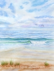 Seascapes and Waterscapes