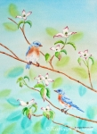 Bluebirds in Dogwood Tree II
