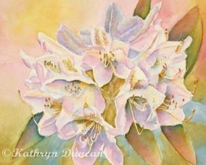 """""""Glowing Once Glowing Twice"""" Rhododendrons"""