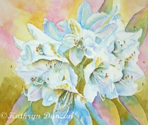 """""""Go With The Glow"""" Rhododendrons"""