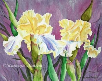 Iris Cream Duo