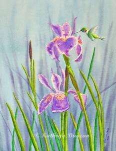 Purple Dutch Iris and Hummer