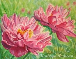 Springtime Red Blooms - Peonies