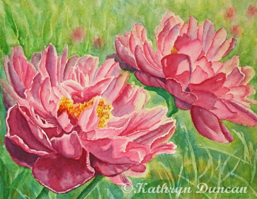 Springtime Red Blooms - Peonies
