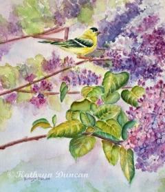 Summertime Arrival Finch