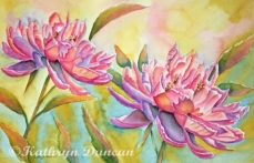 """""""Tea For Two"""" - Peonies"""