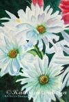 White Daisy Trio