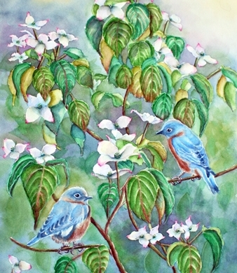Wild Bluebirds in White Dogwood Tree