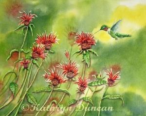 Hummingbird In Beebalm