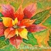 kathryn-duncan-poinsetia-rose-hpr-e_wm