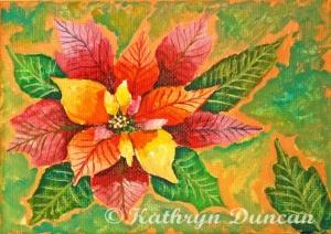 Poinsettia - Rose