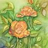 kathryn-duncan-autumn-roses-e_wm
