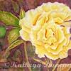 kathryn-duncan-ramblin-rose3-W_wm