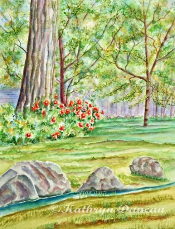 Garden Walk - Poppies