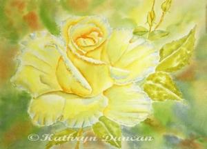 """Sunshine Rose"""