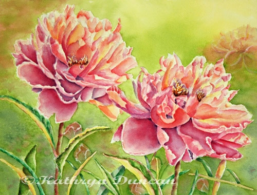 Two To Tango - Peonies