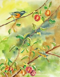 """An Apple A Day"" Orioles"