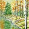 kathryn-duncan-Autumn-Woods-E_wm