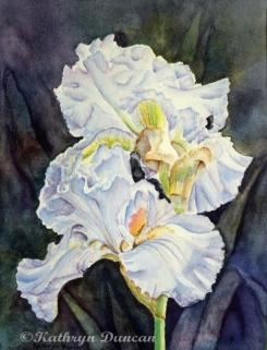 """""""Blue Velvet Irises"""""""