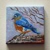 kathryn-duncan-bluebird-e_wm