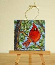 Cardinal - Summer