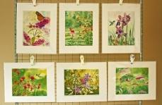 Watercolor Painting Hummingbird Prints