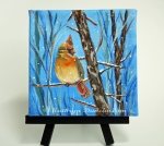 Yellow Cardinal - Winter
