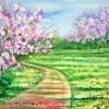 Cherry Blossoms Landscape