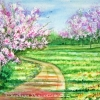 kathryn-duncan-cherry-blossoms-2E_wm